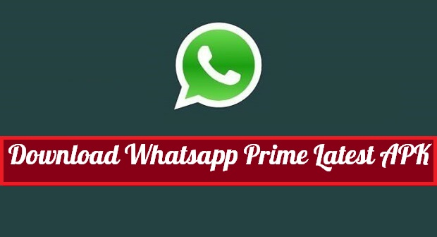 Whatsapp Prime Apk Download Latest Version
