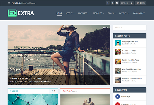 15 Best WordPress Professional Themes of 2017