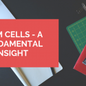 STEM CELLS - A FUNDAMENTAL INSIGHT