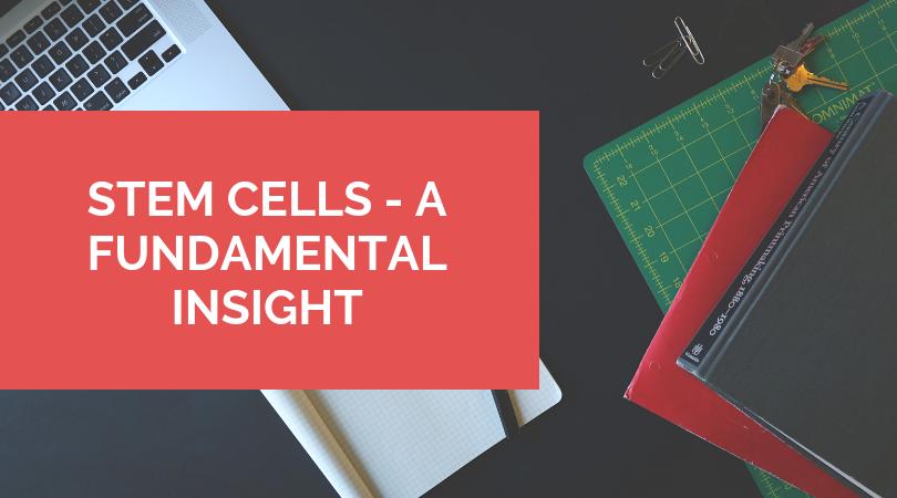 STEM CELLS - A FUNDAMENTAL INSIGHT
