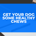 Get Your Dog Some Healthy Chews
